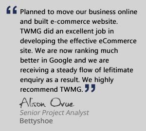 Sydney's #1 e-Commerce online store Web Design Agency | TWMG